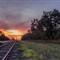 Rail crossing_Bellevue road