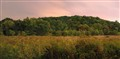 Forest 44 Conservation Area, near Valley Park, Missouri, USA - panoramic night view of prairie and hill