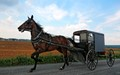 Amish Highway Speed