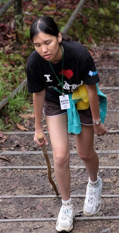 Young hiker reaches her limit on descent of Mt Kinabalu, Borneo she is literally falling asleep as she makes the last few steps