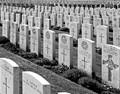 Flanders Fields WWI Allied Cemetery