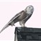 Snowy-Owl-Stretch