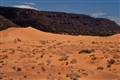 Coral Pink Sand Dunes State Park - Utah