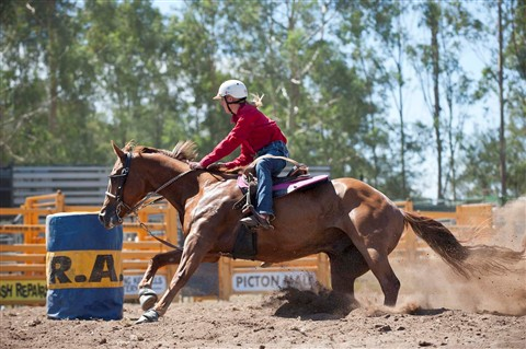 _7BL3734 picton rodeo 70-200