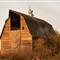 armour barn