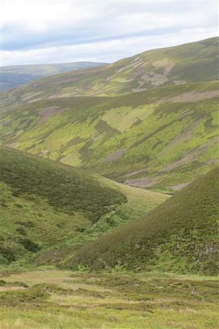 Cairngorm Valley