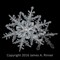 Snowflake 2016-013 1600 James A Rinner