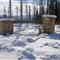 Siberian Toilets