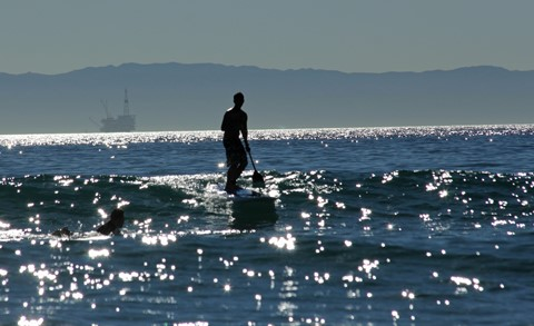 Seal Beach Paddle Boarder in Blue and Black edit