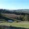 Near Buchan (Vic)