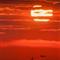 Sunset_Patrol-1