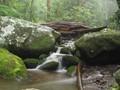 Silk Stream