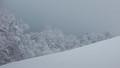 snowy madness