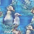 freebird 1