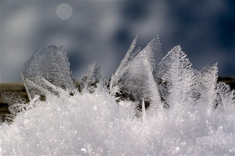 Feathery snow crystals