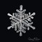Snowflake 2016-023 JAR