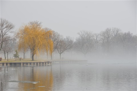 Fog Jeff Park Menasha_Apr 10 2011_0005