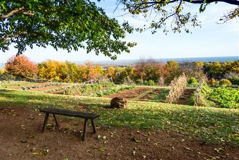 Farming view