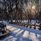 NY-Snow-16