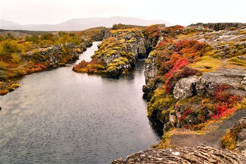 Iceland: Autumn Colours