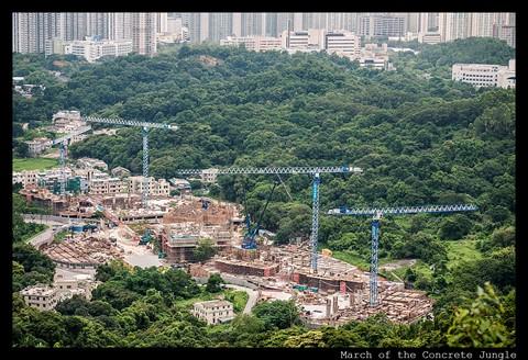 P1170341 March of the concrete jungle Feng Yuan NT HK