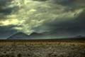 AfricaBurn - Tankwa Karoo