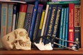 Shelf, surgeon's library