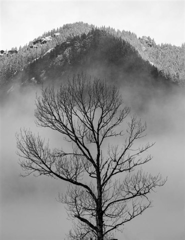 Elwha_Cottonwood_Clouds_Snow_1_030713_bw_reduced