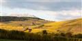 Alsace - Route des vins - Haut Koenigsbourg