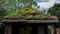 roofgarden Heidelberg Zoo