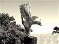 Driftwood Bird Sculpture, Nepenthe CA