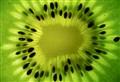 Kiwi Sunlight