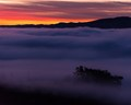 above the fog at sunrise