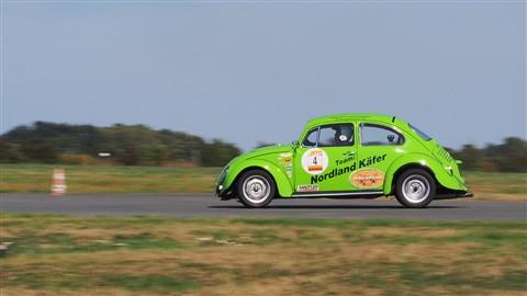 Grüner Käfer 1