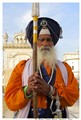 The Golden Temple Guard, Amritsar, India