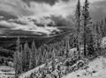 Teton Pass Early Snow