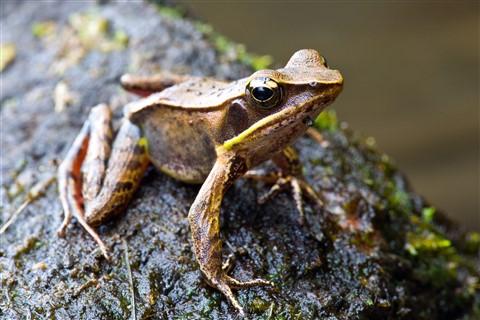 2012_Costa_Rica_164