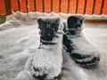 Snowfall in Quebec