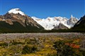 Cerro Torre Valley - Southern Patagonia, Argentina