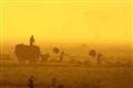 Myanmar Farmer Life