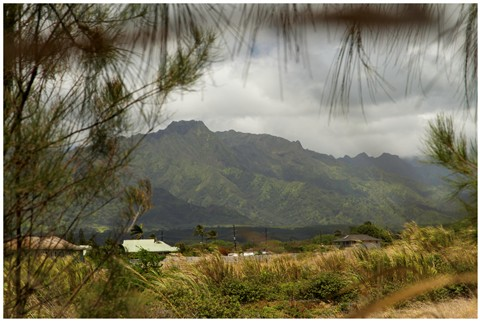 Kauai View 54