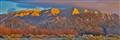 Sandia Sunset NM