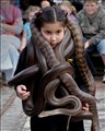 OK: You want snakes!