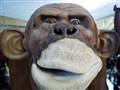 wooden monkey