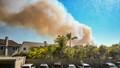 BC Wildfire - Huntington Beach-8041