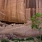 CanyonDeChelly_WhiteHouseCliffDwellings_1XS_050713_950px_reduced