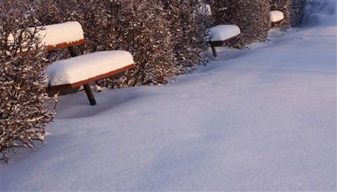 IMG_6122 bänkar i snö
