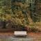 19 bench: OLYMPUS DIGITAL CAMERA