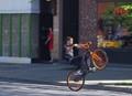wheeled cycle