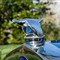 Ford's flying quail radiator cap